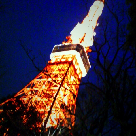 東京タワー 2009/03/10-1
